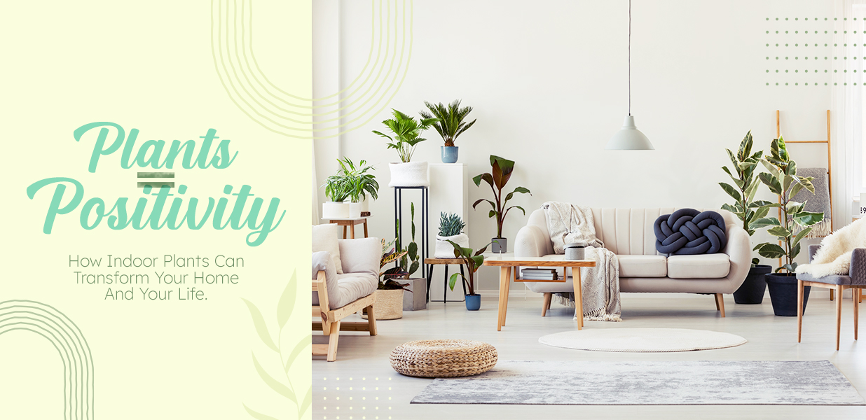 Plants = Positivity: How Indoor Plants Can Transform Your Home And Your Life
